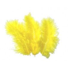50PC FEATHERS GOLD